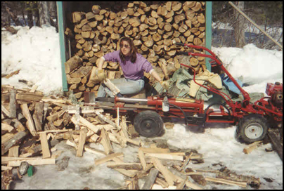 Lots of firewood to split!